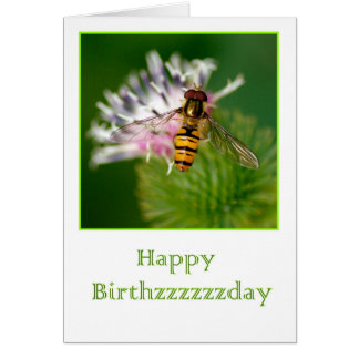 Birthday card with WASP on a thistle flower