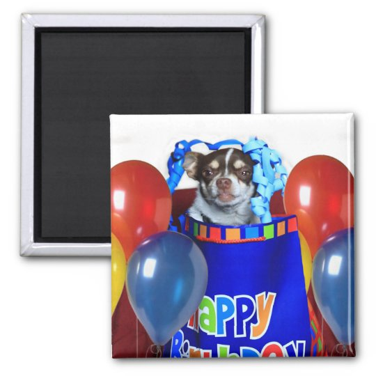 Birthday Chihuahua dog magnet