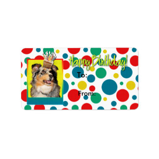 Birthday Cupcake - Australian Shepherd - Dustine
