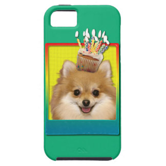 Birthday Cupcake - Pomeranian iPhone 5 Cases