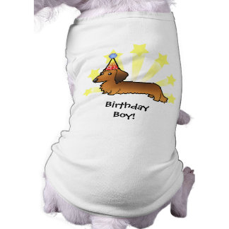 Birthday Dachshund (longhair) Pet Clothes