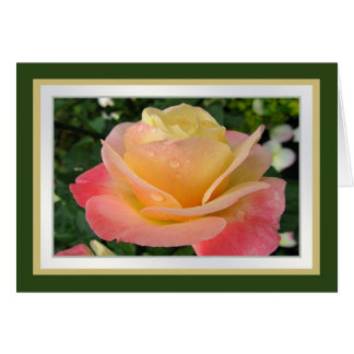 Birthday.Daughter.Yellow-pinkish rose with dew. Card