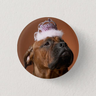 Birthday Dog 1 Inch Round Button