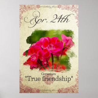 "Birthday flowers on April 24th ""Geranium"" Poster"