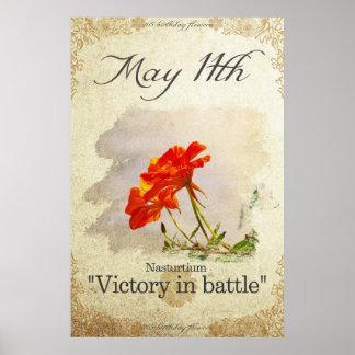 "Birthday flowers on May 11th ""Nasturtium"" Poster"