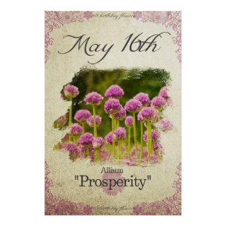 """Birthday flowers on May 16th """"Allium"""" Poster"""