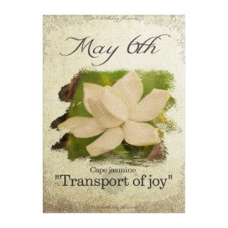 "Birthday flowers on May 6th ""Cape jasmine"" Acrylic Wall Art"