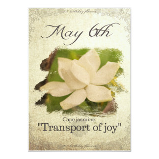 "Birthday flowers on May 6th ""Cape jasmine"" Card"