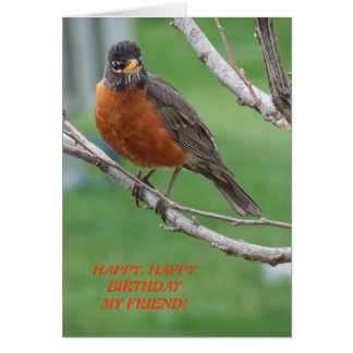 Birthday Friend, Robin & Cake Card