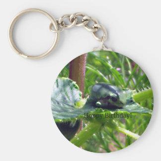 Birthday Frog Basic Round Button Keychain