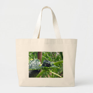 Birthday Frog Large Tote Bag