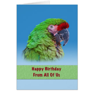 Birthday,  From All of Us, Green Parrot Greeting Card