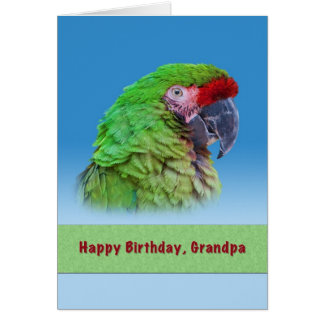Birthday,  Grandpa, Green Parrot Greeting Card