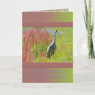 Birthday Great Grandfather Sandhill Crane Bird Card