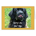 Birthday greeting ~ Newfoundland Dog Card