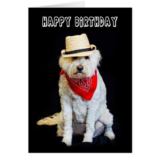 BIRTHDAY - HUMOR - DOG/COWBOY HAT AND SCARF CARD