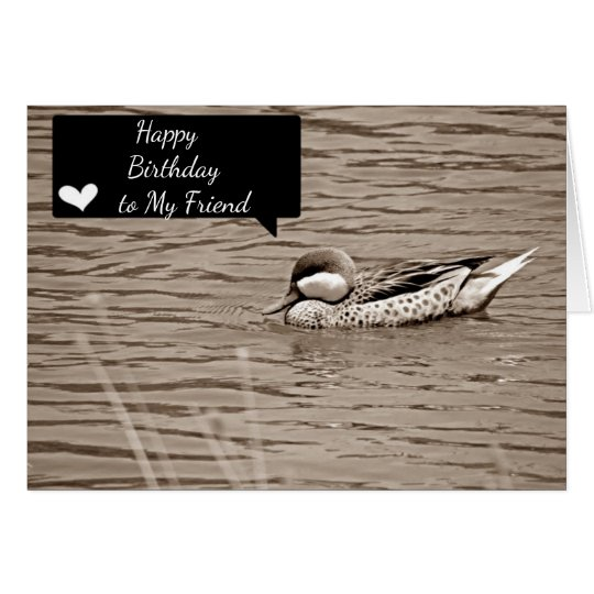 BIRTHDAY HUMOR *FRIEND* NEVER PARTY/SWIM ALONE CARD