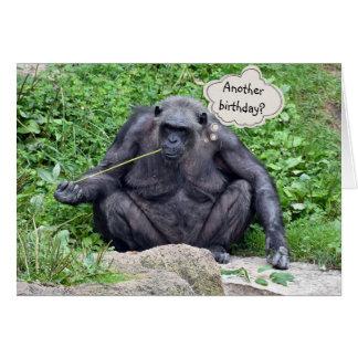Birthday humor with chimpanzee card
