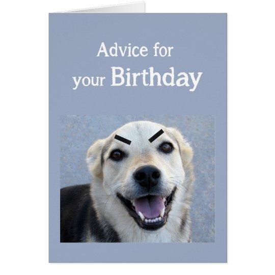 Birthday Humour Cute Dog New Trend Eyebrows Fun Card