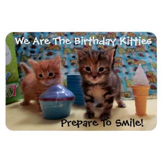 Birthday Kitties 4 x 6 Flexible Photo Magnet