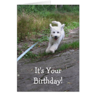 Birthday Love with Cute Running Goldendoodle Pup Card