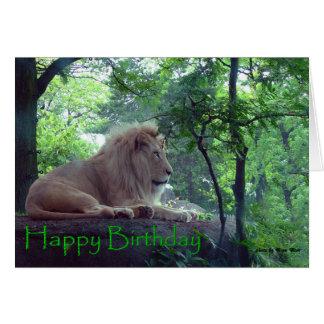 Birthday Male Lion Card