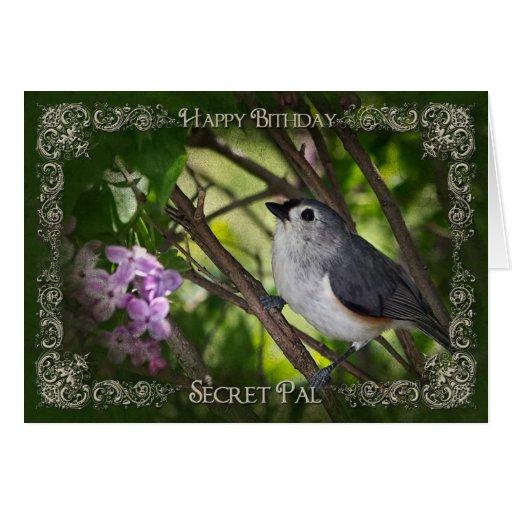 BIRTHDAY - NATURE - SECRET PAL CARDS