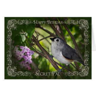 BIRTHDAY - NATURE - SECRET PAL GREETING CARD