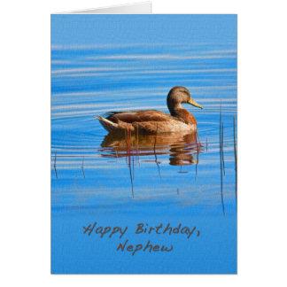 Birthday, Nephew, Mallard Duck Card