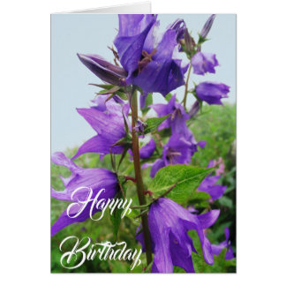 Birthday  or all occasion card
