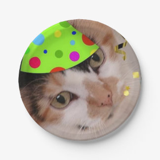 Birthday Party Calico Cat Paper Plate