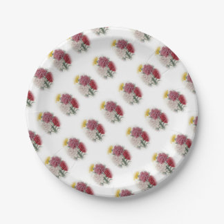 Birthday Pinks - Soft Edged Oval Paper Plate