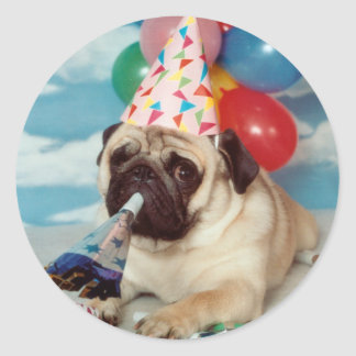 Birthday Pug Stickers