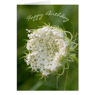 birthday-Queen Anne's Lace macro Card