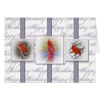Birthday - Red Cardinals Card