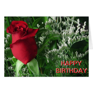 Birthday Red Rose Bud Greeting Cards