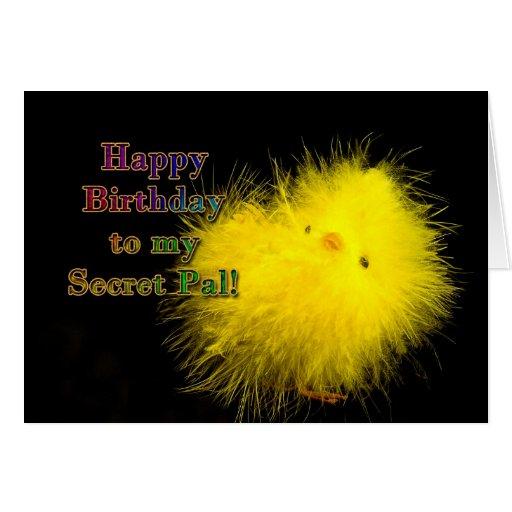 Birthday - Secret Pal - Cool Chick Greeting Card