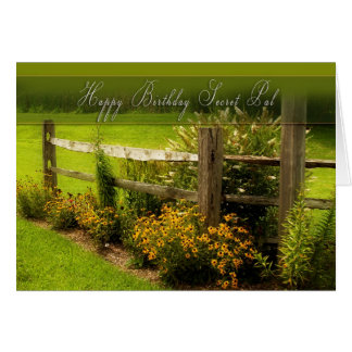 Birthday - Secret Pal - Daisies in Country Greeting Card