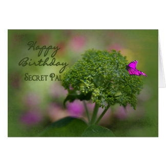 Birthday - Secret Pal - Pink Butterfly on Green Greeting Card