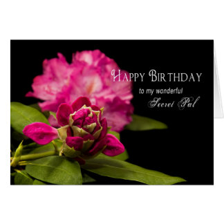 BIRTHDAY - SECRET PAL - RODODENDRONS on Black Greeting Card