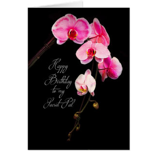 BIRTHDAY - SECRET PAL/SISTER - FUCHSIA ORCHIDS GREETING CARD
