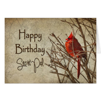 Birthday - Secret Pal - Textured - Red Cardinal Greeting Card