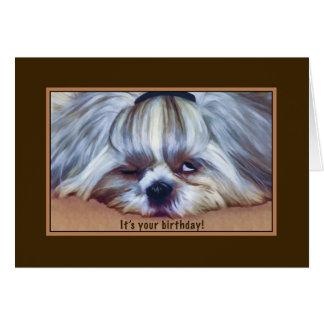 Birthday, , Sleepy Shih Tzu Dog Card