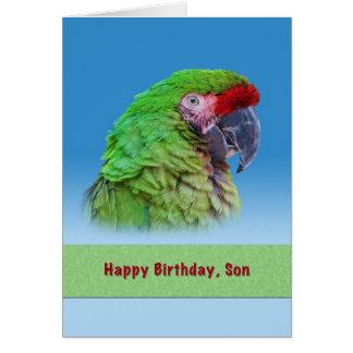 Birthday,  Son, Green Parrot Greeting Card
