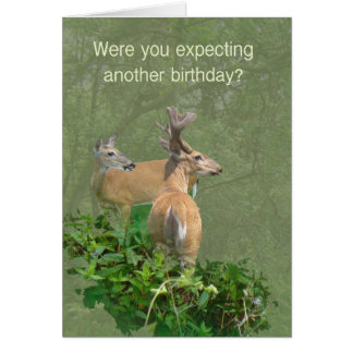 Birthday Whitetail Deer Buck & Doe Card