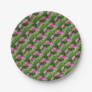 Birthday Wishes Pink Daisies 7 Inch Paper Plate