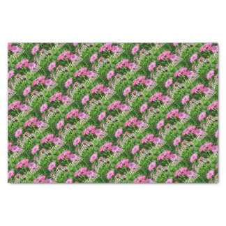 Birthday Wishes Pink Daisies Tissue Paper