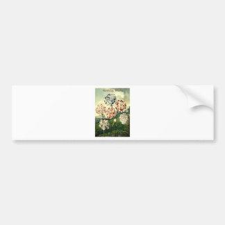 Birthday Wishes - Striped Carnation Bumper Sticker