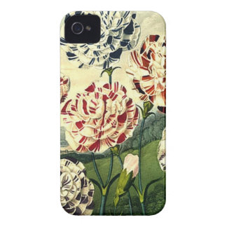 Birthday Wishes - Striped Carnation Case-Mate iPhone 4 Cases