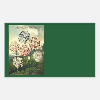 Birthday Wishes - Striped Carnation Sticker